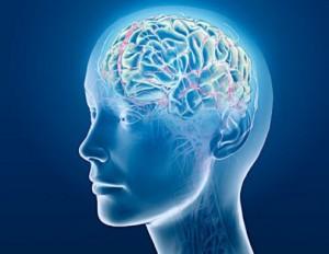 brain-fatigue